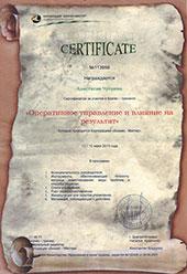 Сертификат - Оперативное управление и влияние на результат